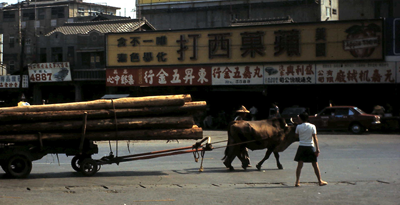 Logs being transported through Chiayi in 1972